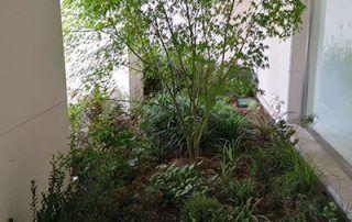 diseño-jardines-interiores