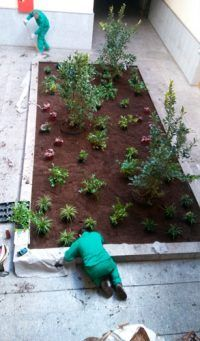 equipo-de-jardineria-