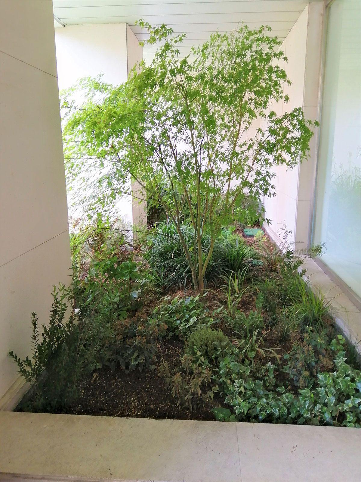 terrazas-y-patios (1)