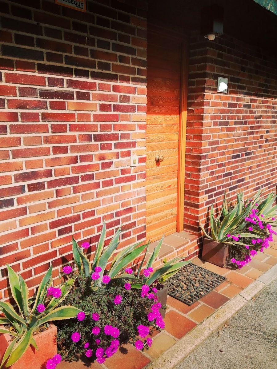 terrazas-y-patios (2