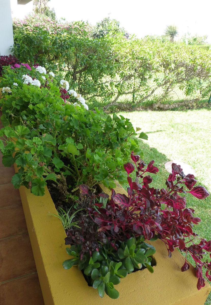 terrazas-y-patios (5)