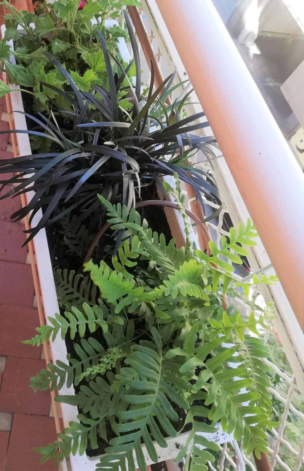 terrazas-y-patios (7)
