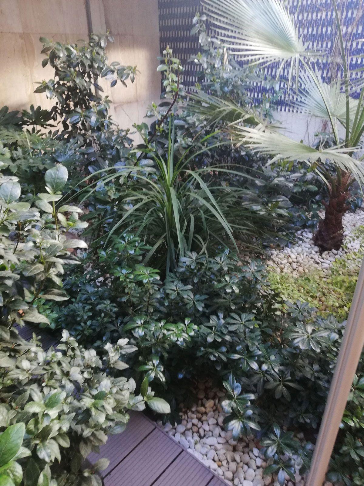 terrazas-y-patios (9)