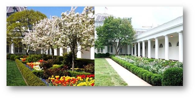 Jardines 1962 y 2020