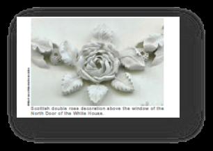 Detalle de Rosas en muros de la Casa Blanca